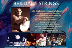 Brilliant Strings Flyer